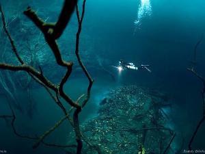 Sungai Dalam Laut Mexico