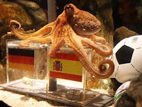 Video Paul Gurita Peramal prediksi pertandingan Piala Dunia dikabarkan mati atau meninggal