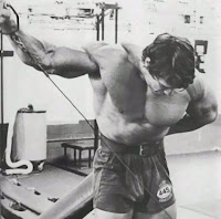 Arnold hey you, no pain no gain