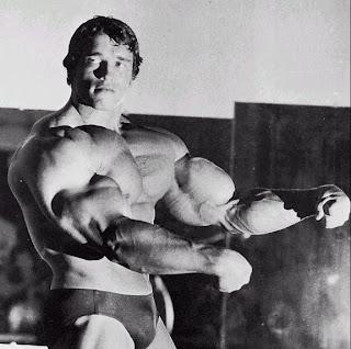 Apresentacao, competicao, mr olimpia, 1975,1976, 77, 78, 79, 80, mostrando biceps e triceps desenvolvidos