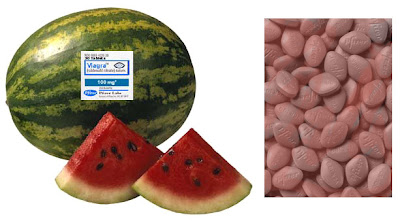 Watermelon viagra like effects