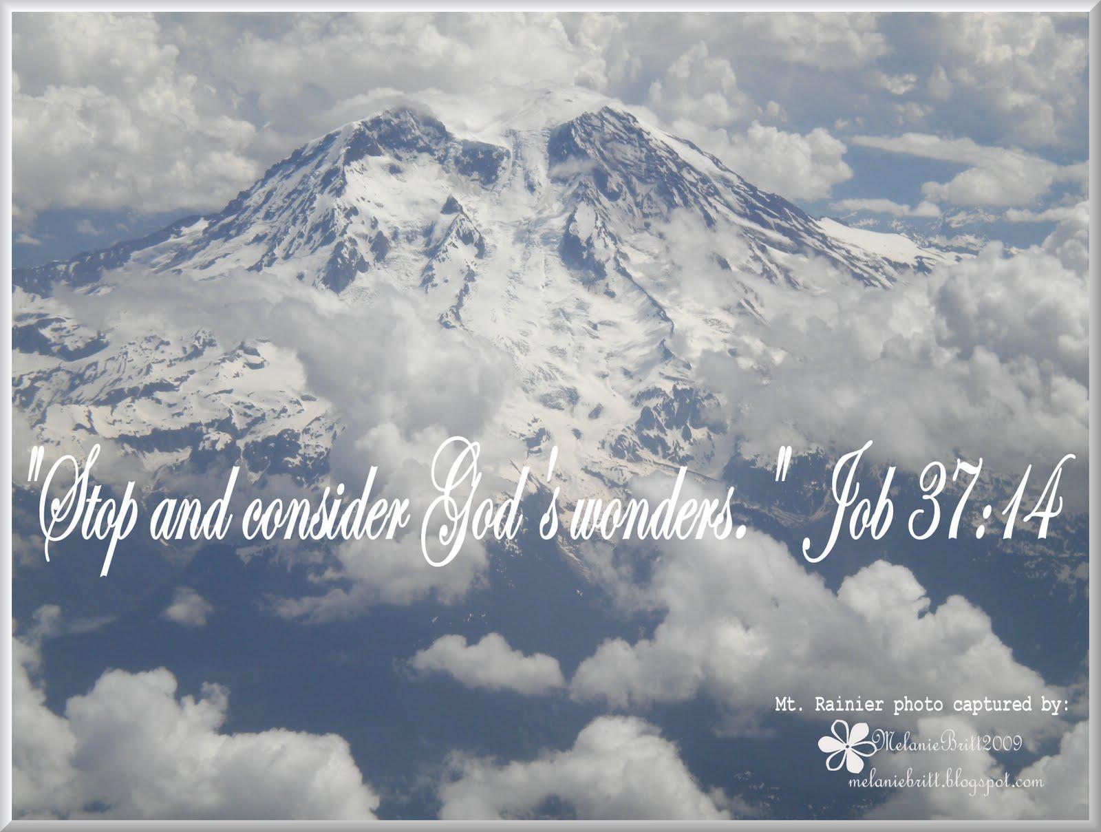 Consider Gods Wonders