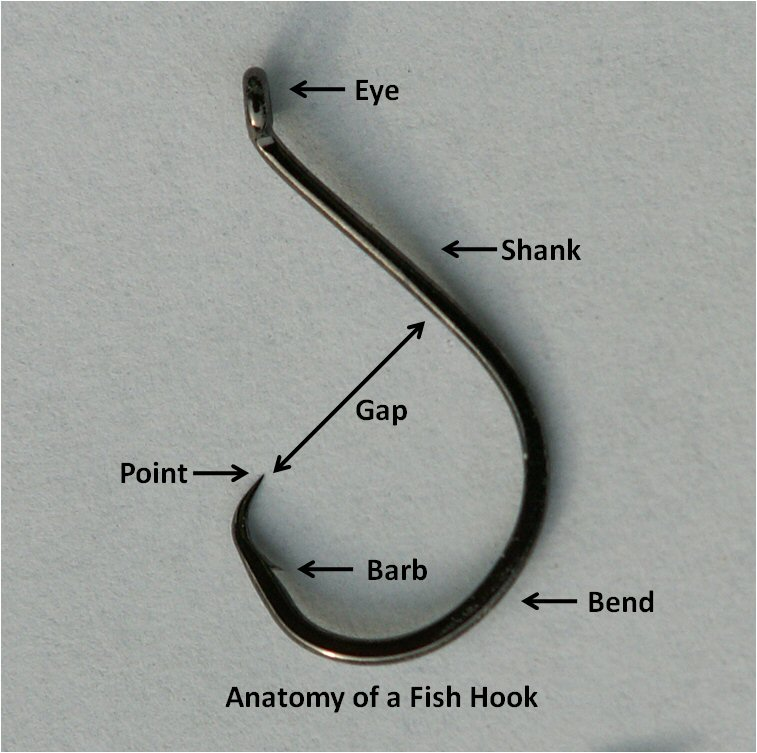 Autofishook automated fishing hook for Fish n hook