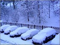 neige lyon