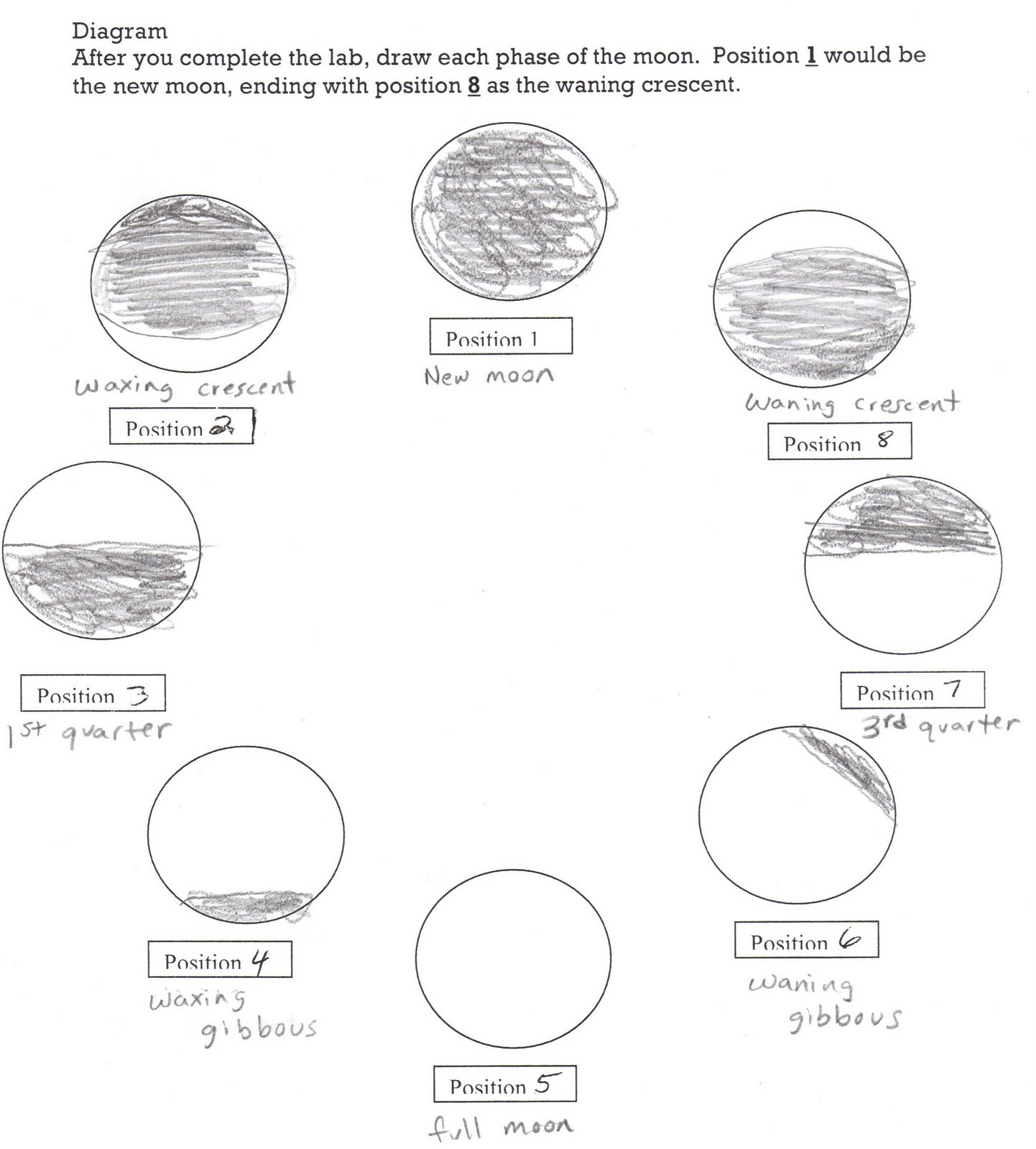 Blank Printable Worksheets About The Moon Phases Pictures to Pin – Phase Diagram Worksheet
