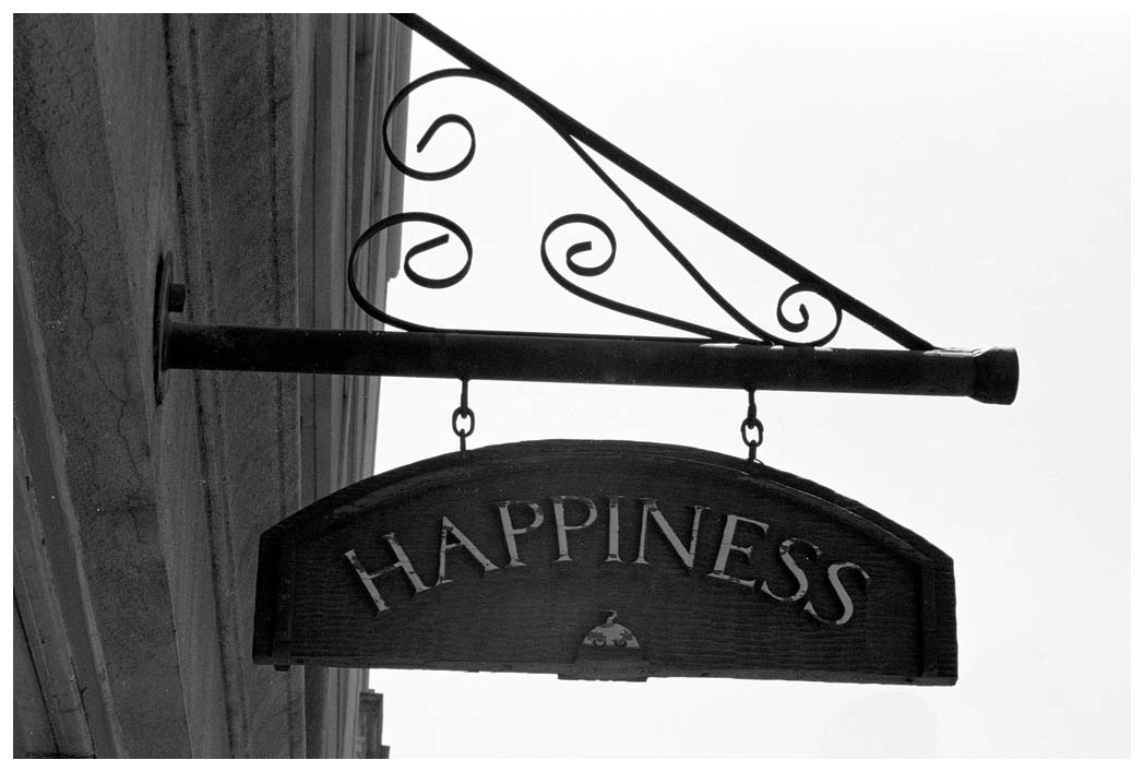 Review An Essay on Public Happiness V1