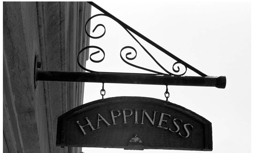 happiness and sadness essay The meaning of happiness would love to use some of these sentences in the anti-depression stand that we may i use this quote in my essay and if so what.