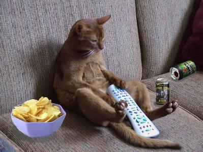 no more couch potatoes essay In 2012, more than one third of children and adolescents were overweight or obese are kids becoming the new couch potatoes [] reply leave a comment.