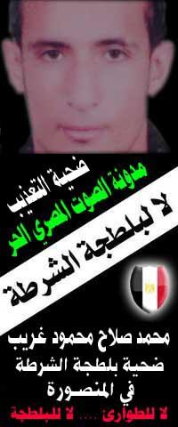 محمد صلاح محمود غريب