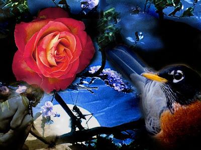Kneeling before the Rose