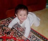 Adam - 8 bulan