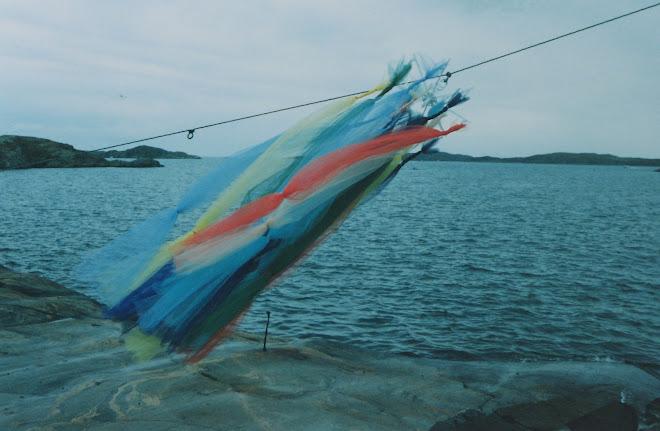 Tyll vid havet