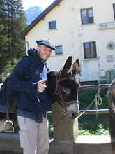 berets and donkeys