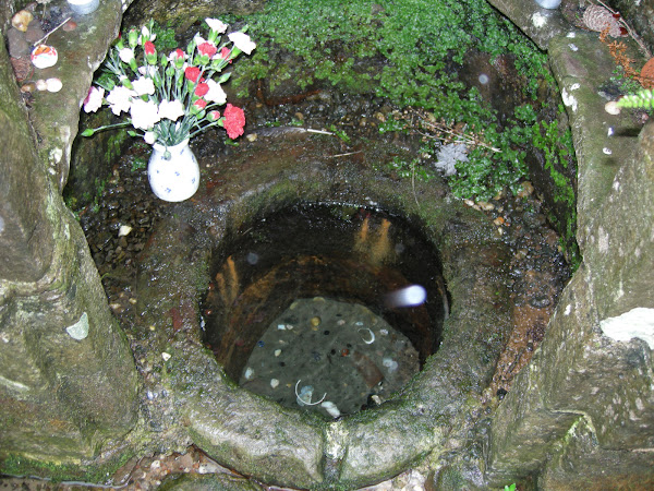 The Source of St Annes Well,Trellech