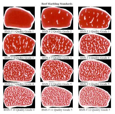Beef marbling standard
