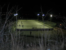 Riverdale rink by night