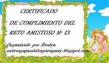 Certificado del Reto amistoso nº 13, Enero 2011