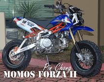 FORZA II