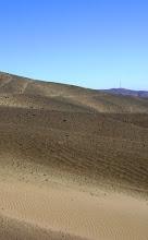 Ecosistema: Pampa