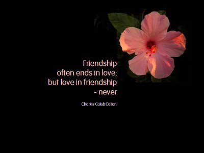 friendship and love friendship a friend is someone who knows the song ...
