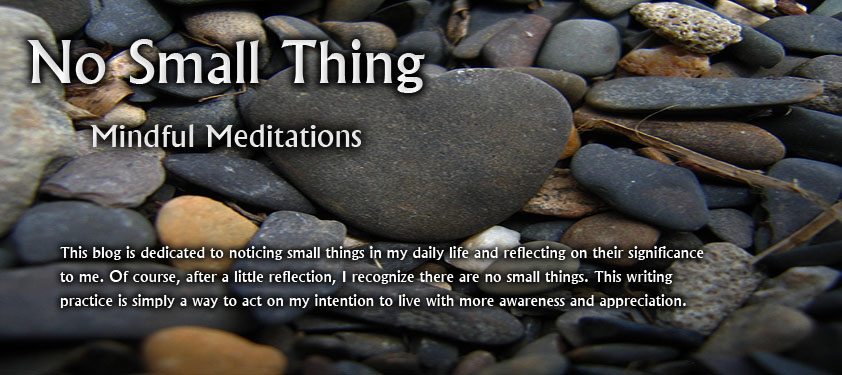 No Small Thing: Mindful Meditations