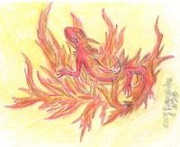 image salamanders