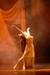 Danza Fiamma Gitana