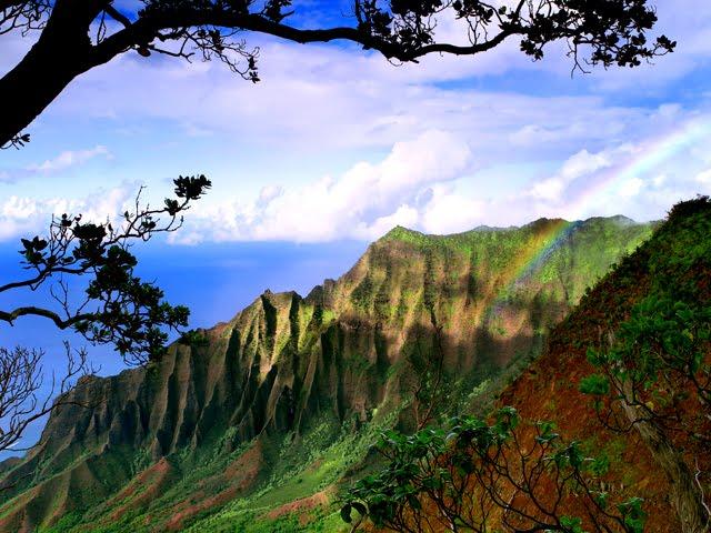 Life And Living. Life and Living on Kauai,