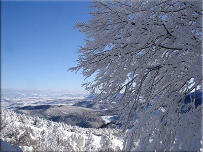 Bella estampa invernal