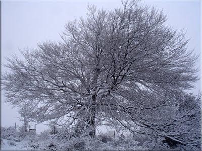 Invierno en Itxogana