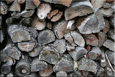 ... más madera para el invierno