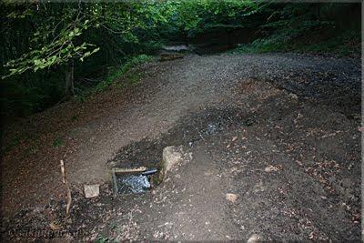 Fuente junto al camino
