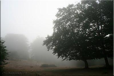Niebla en el ascenso a Kapildui