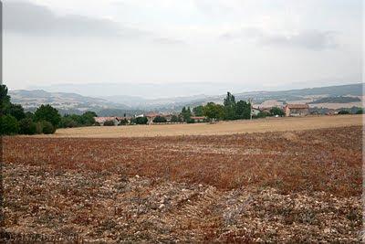 Villamaderne visto desde el camino a Bellojín