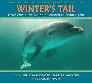 Open casting call for feature film 'Dolphin Tale' extras in ...