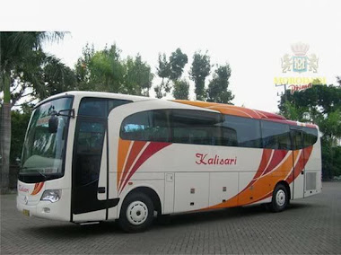 kalisari MP new travego