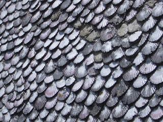 parede de cunchas, Cabío