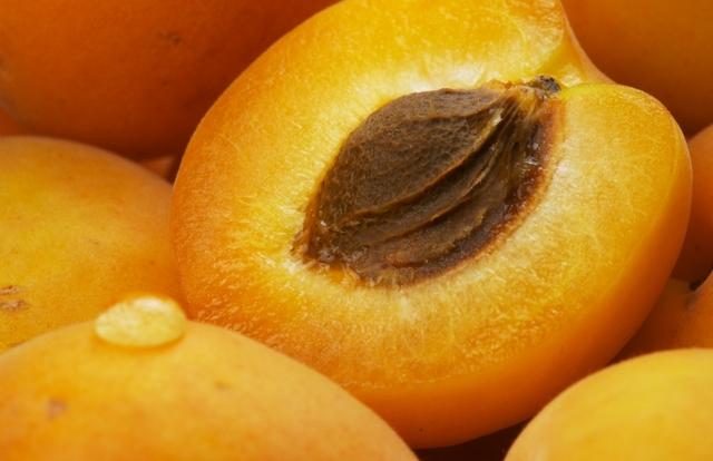 http://2.bp.blogspot.com/_ISCblSV0eKE/TTNehIWduoI/AAAAAAAAAUE/fQyFmIxTOQI/s1600/apricot.jpg