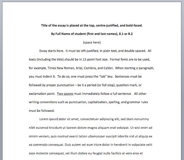 css essays 2010