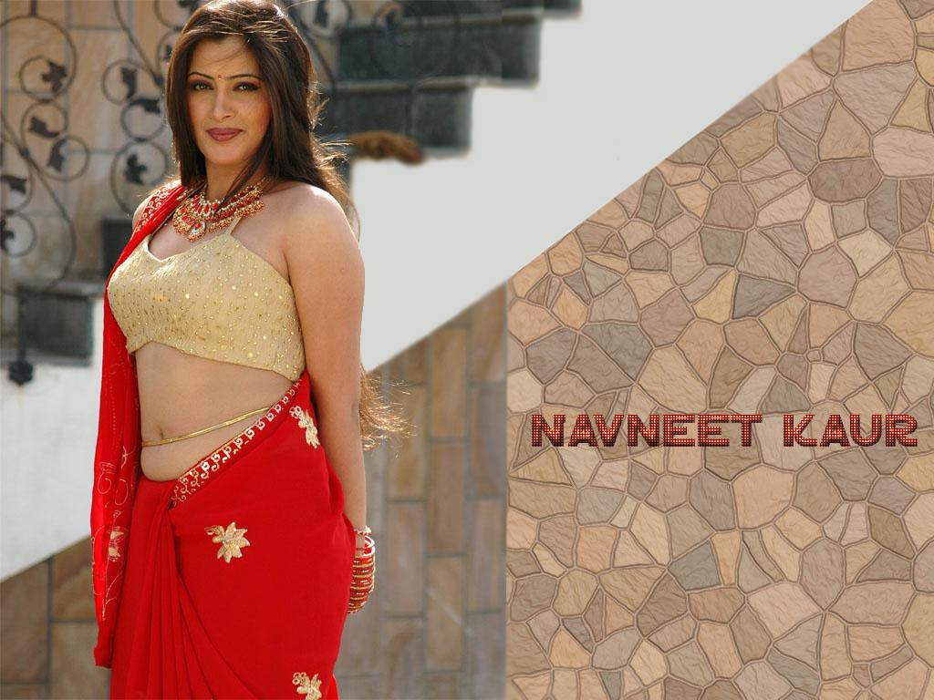 Class 10 Gujarati Navneet Guide PDF Download