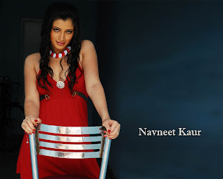 Navneet_Kaur_033_1257140748.jpg (1280×1024)