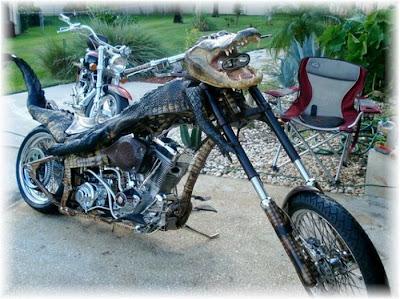 aligator bike