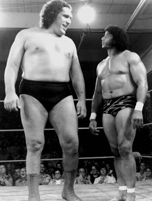 Andre the giant - World Wrestling Federation- WWF