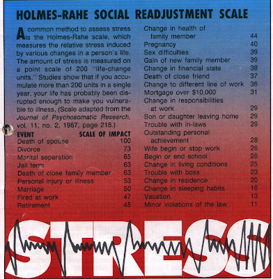 holmes social readjustment scale