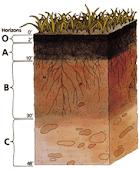 طبقات التربة