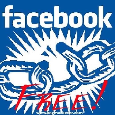 social network egitto