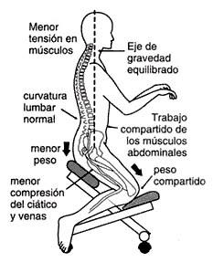 Todo en una silla ambito de la ergonomia for Sillas de oficina ergonomicas baratas