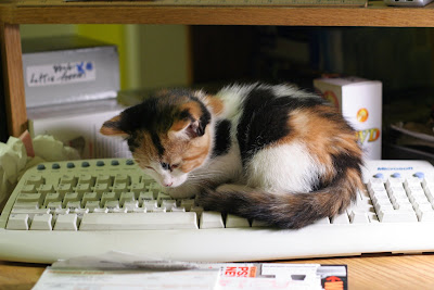 Patches:  Computer Technician by VincenzoF from flickr (CC-NC)