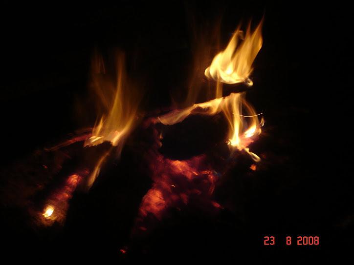Pasărea de foc. Scrum 7