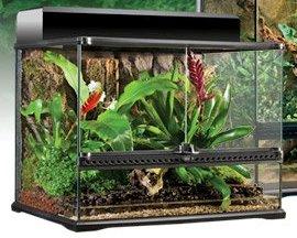 Afr Accessories For Reptile Exo Terra Terrarium Medium Size